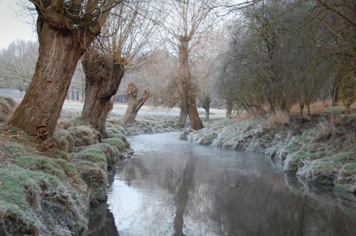 Beverley Brook river in winter